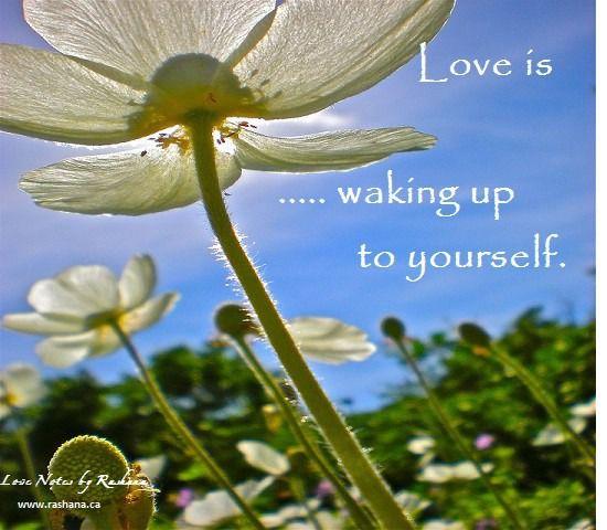 Love Notes & New Seminar