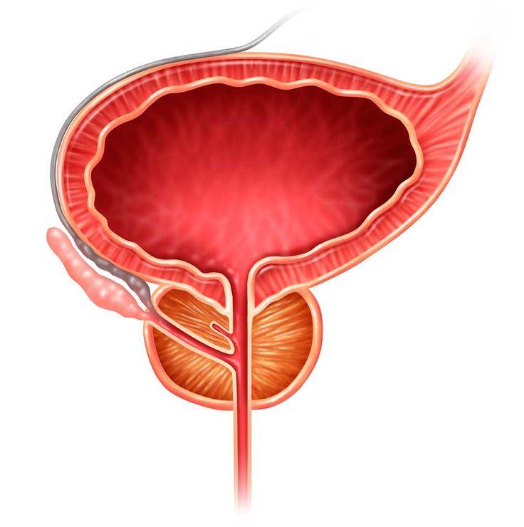 Apropå! Dags att bry sig om »prostatagubbar«