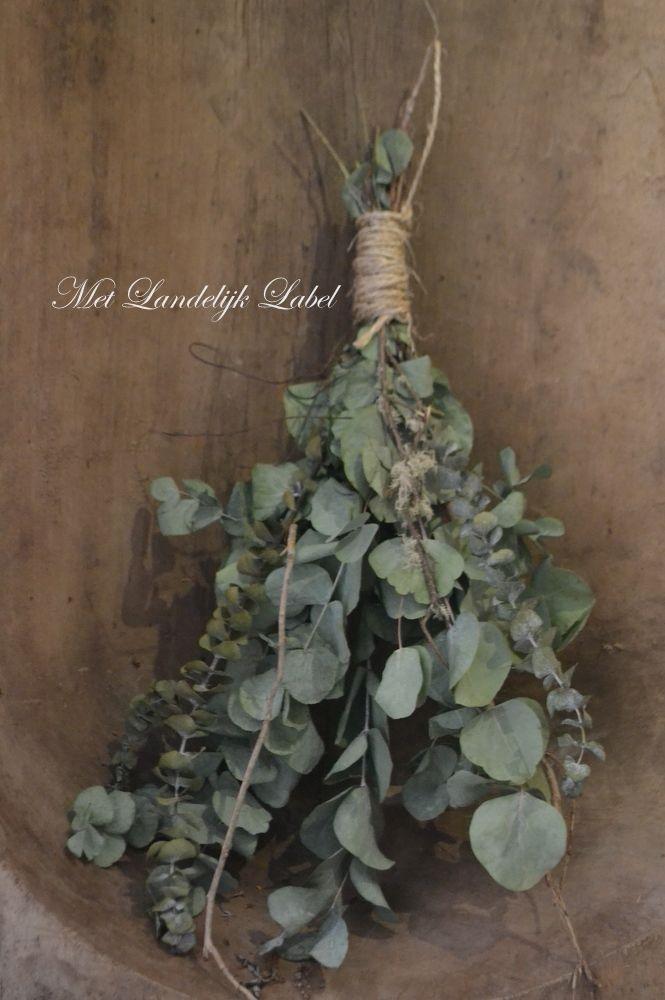 Een prachtig toefje met verschillende takjes. Leuk om op te hangen of om neer te leggen. Droogt prachtig in en gaat jaren mee. afm: 60 cm (lengte)
