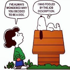 Don't be mislead by a job description.  Ask questions and clarify your understanding of what you will be expected of you.
