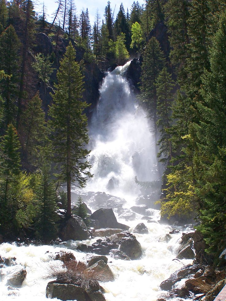 Best 25 steamboat springs colorado ideas on pinterest for Colorado springs fishing