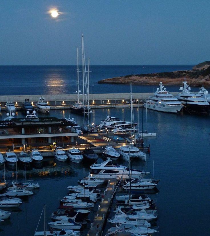 Puerto Adriano by night - El toro Mallorca
