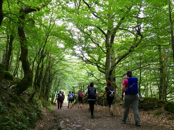 Nordic walking in Ireland. Travel. Holidays. Enjoy sport.  www.nordicwalking-girona.com
