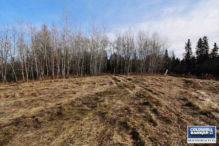 New Listing! RM of Buckland Land $79,900 MLS® Jesse Honch - REALTOR® (306)960-5507 Coldwell Banker ResCom Realty PA Prince Albert, SK