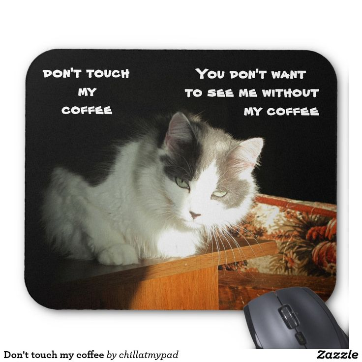 Don't touch my coffee Cat Meme Mouse Pad My