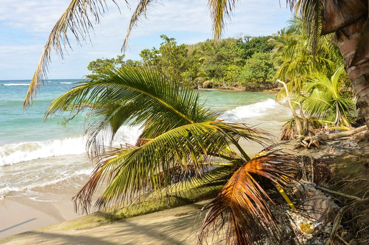 In search of a perfect beach? Try Isla Bastimentos in Bocas Del Toro