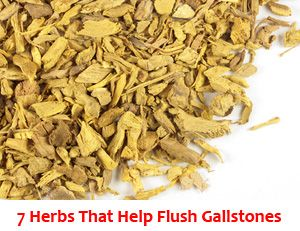 Find out which herbs you can take to get rid of gallstones
