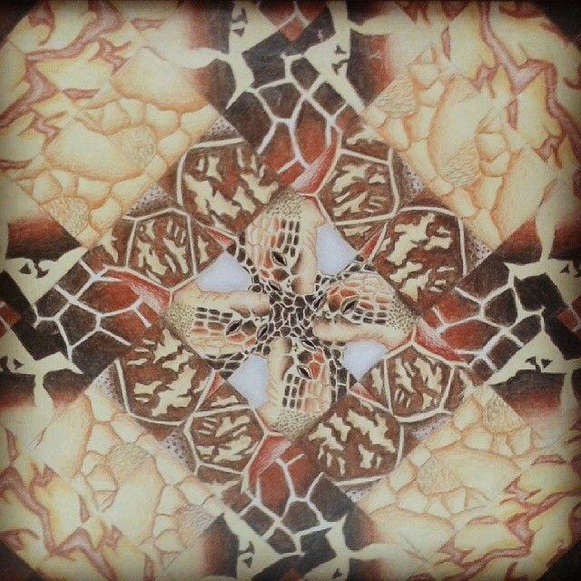 #Simetría #Textura #Tortuga #Draw #Paint #Turtle