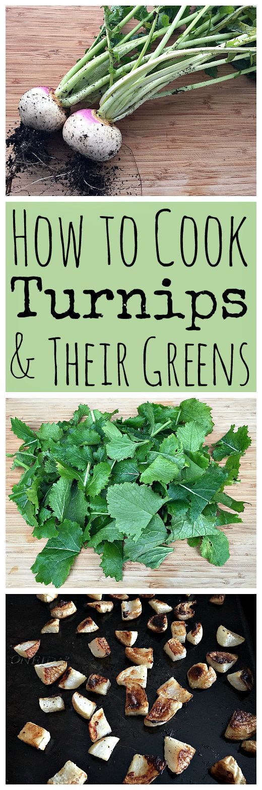 Turnips are a veggie that has gotten a bad rap, but they are actually super tasty! Here are some easy turnip and turnip green recipes.: