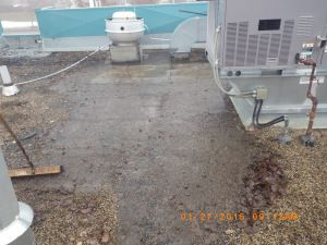 Sweeping Back Gravel To Expose Roof Felts For Repair   Tar And Gravel Flat  Roof Repair