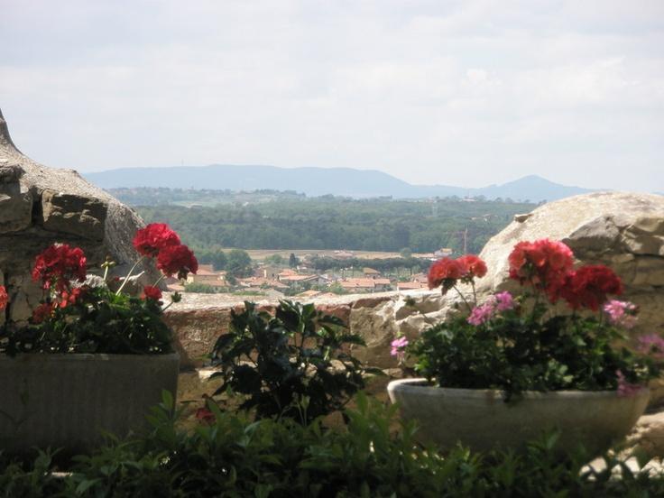 Blick vom Dachgarten in die Umgebung