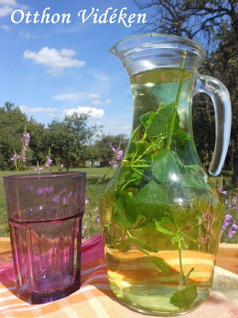Nyáron a teákat friss levelekből készítem. Télirevalót mint a jó hangya, már szárítom 5-10 nap alatt száradnak ki zörgősre a levelek, majd üvegebe teszem és sötét helyen, tisztán tárolom őket, hogy egész jövő tavaszig legyen teánk.