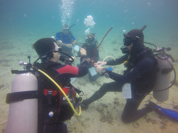 PADI Dive Instructor - Open Water Presentations and Skills - Crystal Dive Koh Tao