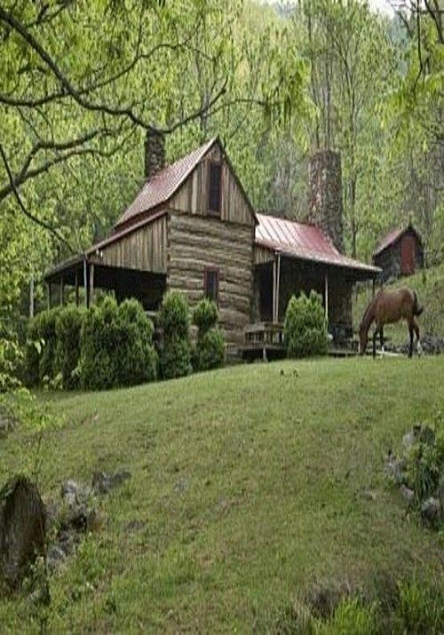 Cabin & Horse. Perfect.