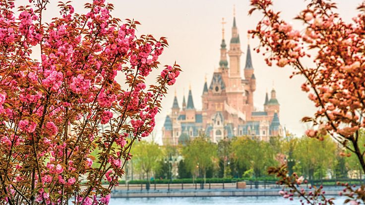images of disney shanghai park   Shanghai Disney Resort News & Updates…