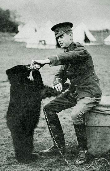 """Lt. Colebourne and Winnie - the bear who became the inspiration for A.A. Milne's """"Winnie the Pooh"""" (his son Christopher Robin named his teddy bear after seeing her in the zoo)"""