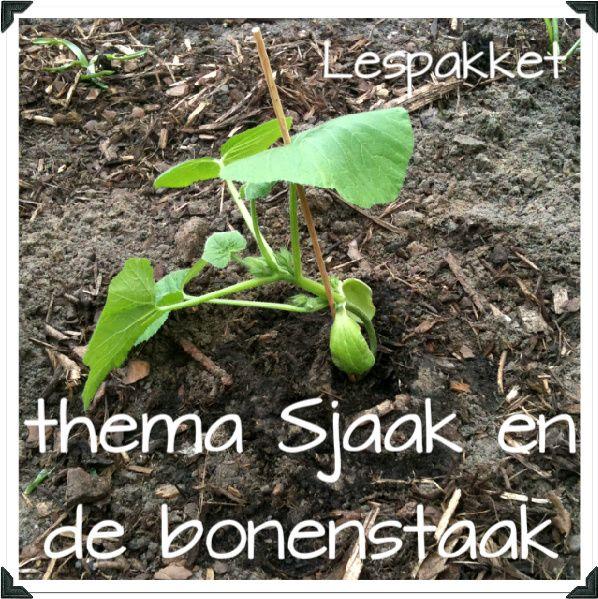 Thema: Sjaak en de bonenstaak – groei en bloei (lente)