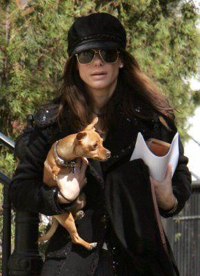 Sandra Bullock and 2 legged dog, Ruby