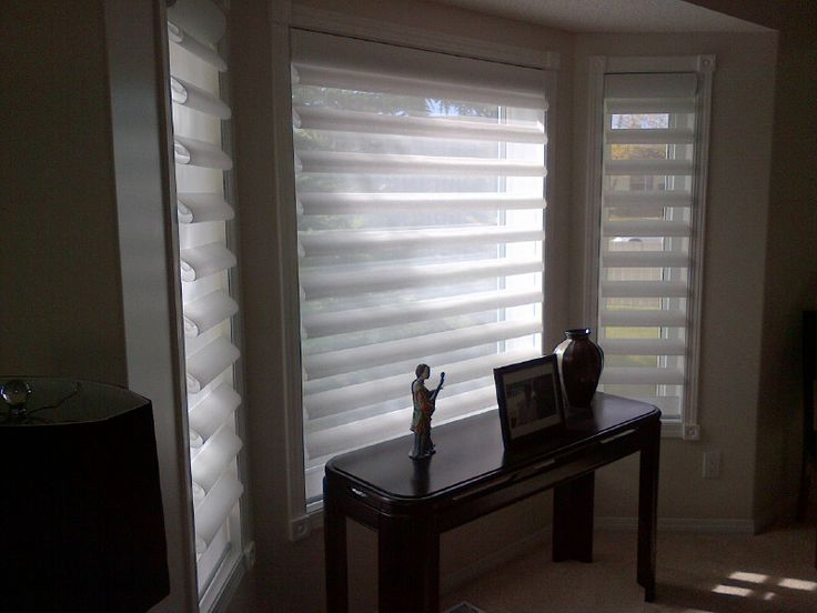 Simple Beautiful Pirouette Window Shades by Sheila s Window Toppers Calgary New - Simple types of blinds and shades Amazing