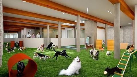 """Quiero Contarte...: Hotel de Lujo para """" perros """""""