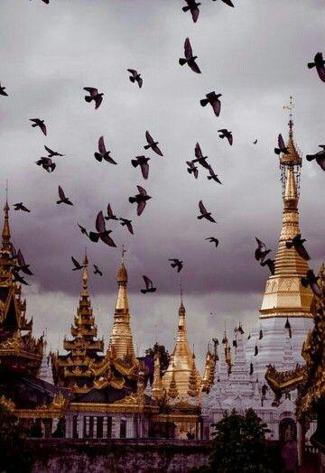 #Myanmar Viajar a Myanmar es hacerlo al país tradicionalmente como Birmania, uno de los países más conocidos del sudeste asiático con más de 54 millones de personas. El pasado y el presente del país se caracterizan por una serie de conflictos esporádicos que han lastrado el crecimiento de su economía. Ya, desde su creación donde un grupo de pueblos hace más de 2.000 años rivalizaban por sus tierras, hasta la caída de la dictadura y la regeneración de la frágil democracia birmana en el siglo…