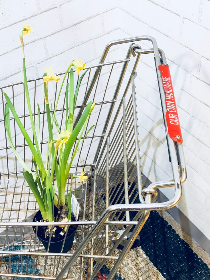 Small Shopping Cart   Hardware Store   Kids' Play   Gardening   Shop Display   Storage   Wire Basket   Laundry by PiccadillyPrairie on Etsy