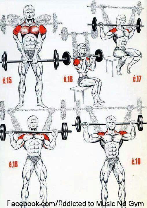 Shoulder  workout!