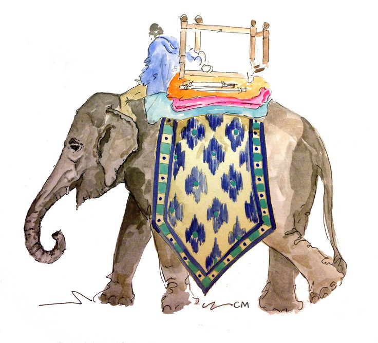 Elephant watercolor | by Champagne Maker