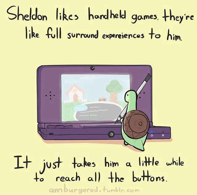Sheldon the Tiny Dinosaur ((Sheldon the Turtle!))
