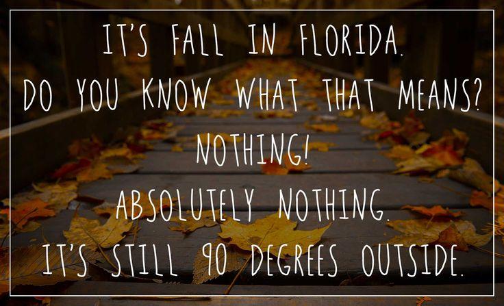 fall in florida meme http://www.wfpblogs.com/category/florida-memes/