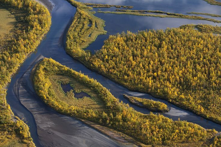 Tracking moose in Sarek National Park by Wild ….amazing view