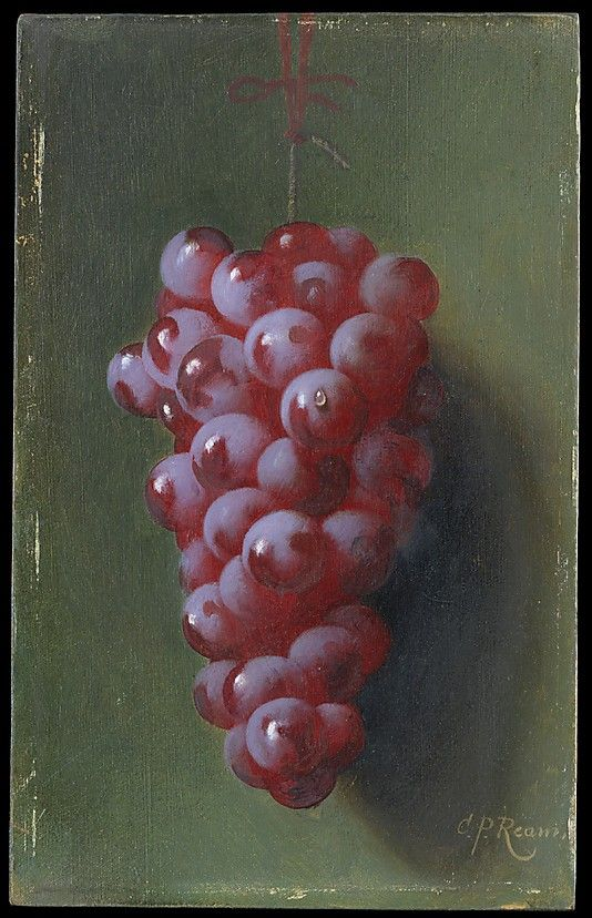 Still Life with Grapes - Carducius Plantagenet Ream (1838–1917) - oil on canvas.