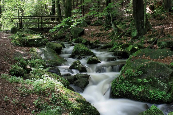 This is in the Teutoburg Forest, near my lovely hometown in Germany! :)