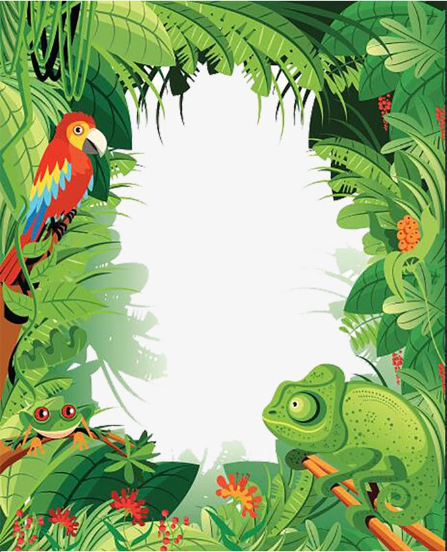 Tropical Rainforest Animals With Images Rainforest Animals