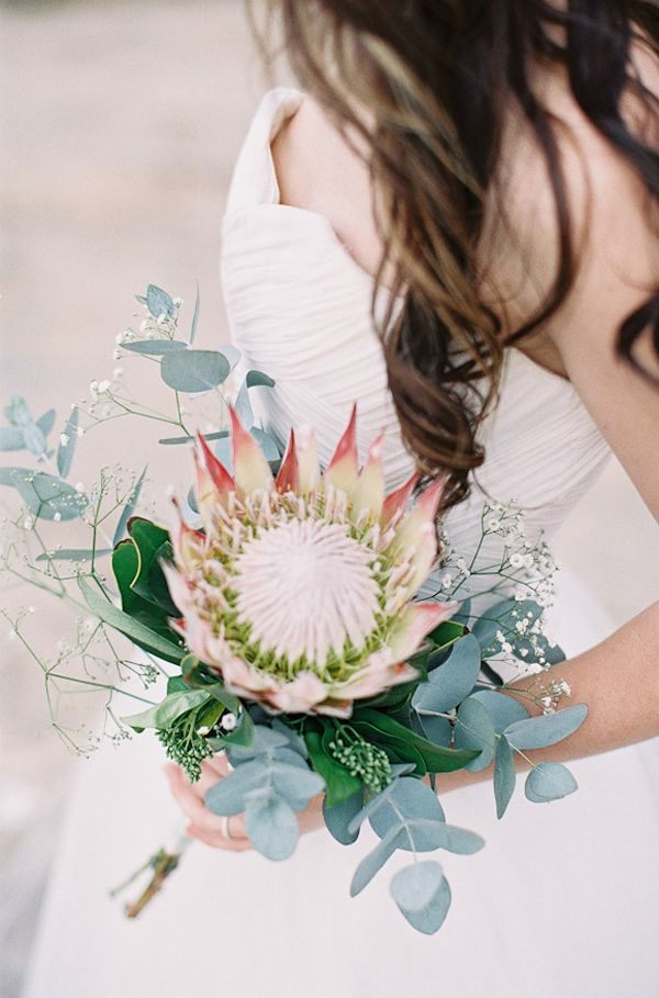 king protea wedding bouquet, photo by Feather and Stone http://ruffledblog.com/south-african-destination-elopement #flowers #kingprotea #weddingbouquet