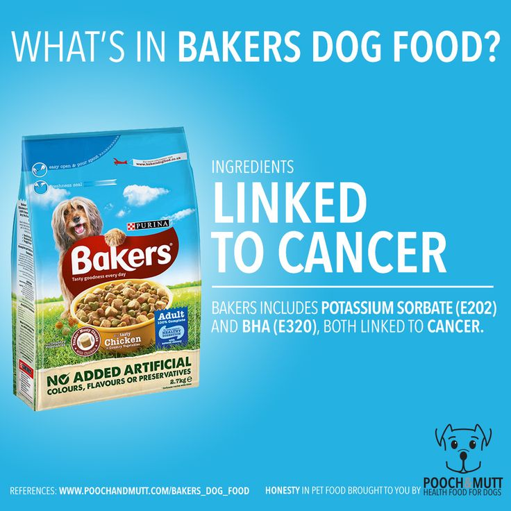 Ingredients examined whats in bakers dog food uncover