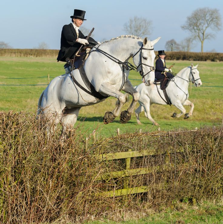 Side saddle Ladies - The Belvoir Hunt at Holwell. Photo by Nico Morgan Photography