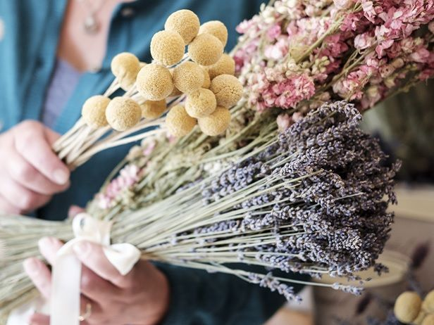 Billy Buttons Craspedia Photoshoot In My Kitchen With Thomas Skovsende For Prima Mag Uk In 2020 Dried Flowers Drying Roses Billy Buttons