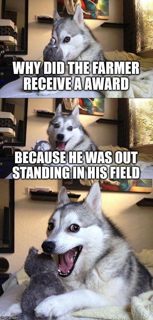 Bad Pun Dog http://ibeebz.com
