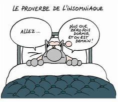 Le Chat - insomnies