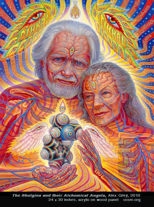 shulgins alex grey