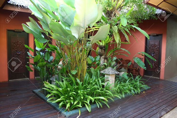 Balinese courtyard designs google search balinese for Tropical courtyard garden design