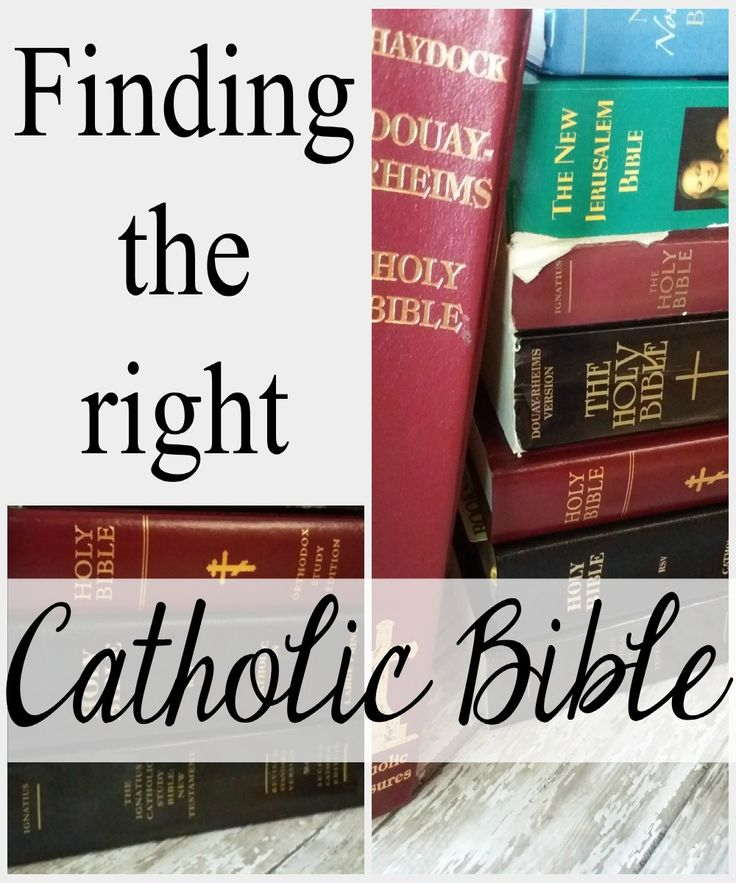 Which is the the right Catholic Bible for you?  In this post--with pictures--I compare 8 Catholic Bibles.