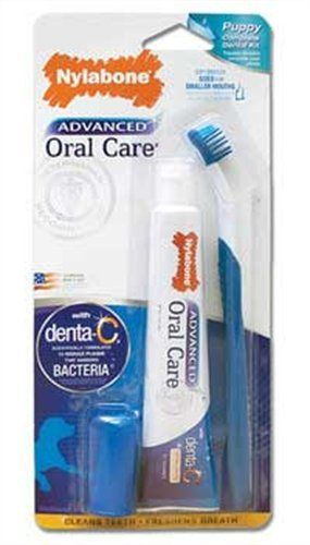 Nylabone Advanced Oral Care Puppy Dental Kit - http://www.thepuppy.org/nylabone-advanced-oral-care-puppy-dental-kit/