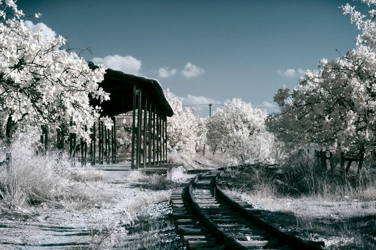 An infrared photo of the abandoned train tracks and a boarding platform at…