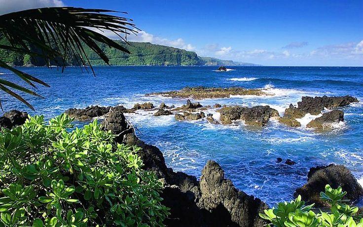 Road to Hana, Maui! www.hawaii-all-inclusive.net #Hawaii #Maui #hawaiivacation #allincluisvehawaii #mauiallinclusive