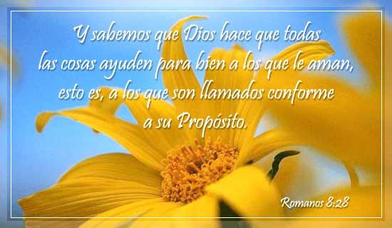 Espanol, Romanos 8:28 - Free Christian Ecards, Greeting Cards