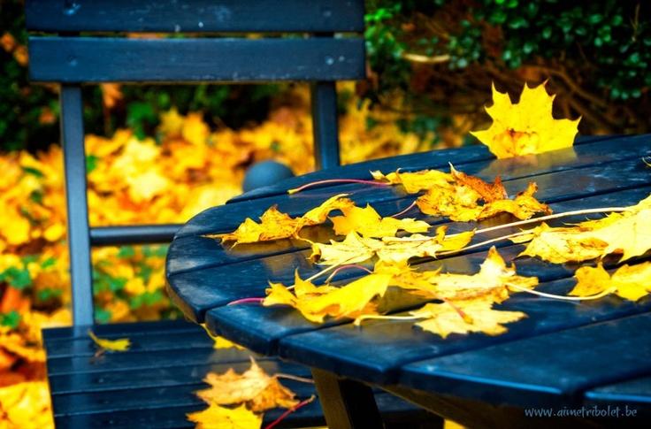 Autumn Blue Table