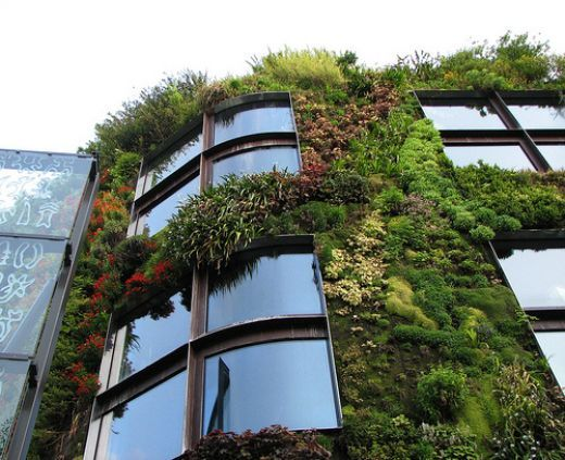 Green Walls - I wants one: Future Houses, Growing Plants, Green Home, Green Building, Living Walls, Green Walls, Vertical Gardens, Old Building, Wall Gardens