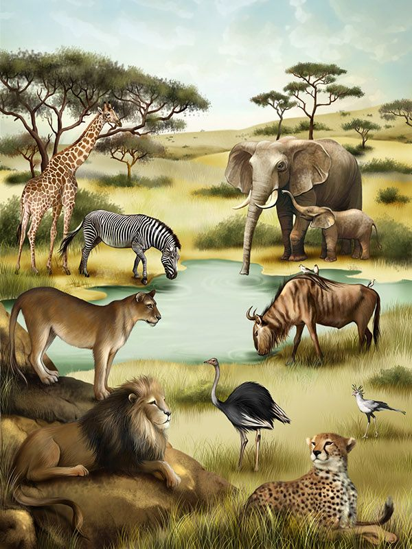 «Animals in the Forest» is an interactive  ebook for children. Pressing on each animal tells you what it is.